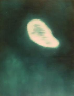 untitled - 116 x 89 - 2003